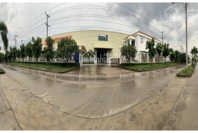 Cần tiền bán nhà xưởng đang sử dụng trong KCN Sóng Thần 3, P. Phú Tân, Thủ Dầu 1, Tỉnh Bình Dương