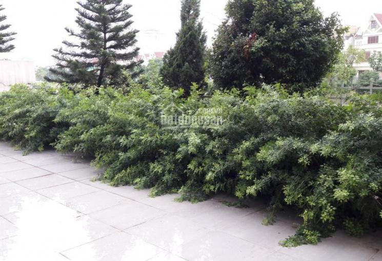 Bán biệt thự 4 tầng DT 484m2 mặt tiền 12m khu đẹp nhất Ciputra, Tây Hồ, Hà Nội: 0981222026