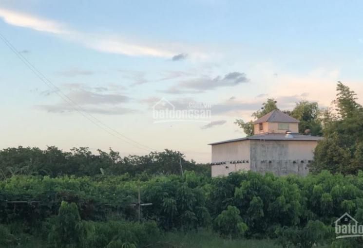 Cần bán nhà vườn, Chơn Thành Bình Phước, diện tích lớn, giá cực tốt, LH 0972115668