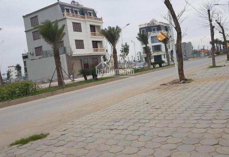 Chính chủ cần bán căn nhà biệt thự 200m2 tại KĐT Thanh Hà Cienco 5