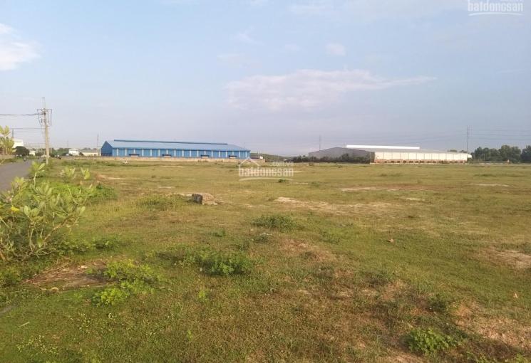 Bán đất tại công nghiệp tại Nhơn Trạch, cách phà 4.5 km, diện tích 1 - 3 hecta, từ 18 tỷ