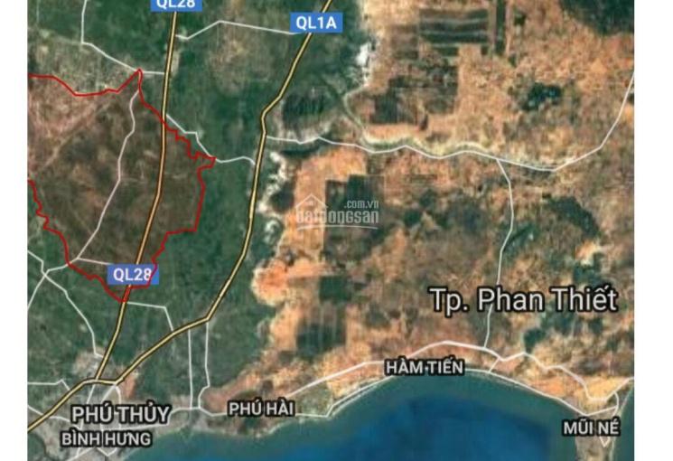 Bán nông trại thanh long Việt Hàn 21,6 hecta tại Phan Thiết - Bình Thuận 0908.26.02.09