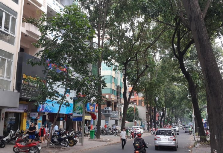 Bán nhà P6, Q3, Phạm Ngọc Thạch - MT ngang 7m x 29m, 1 trệt 4 lầu, hàng hiếm 1 căn duy nhất