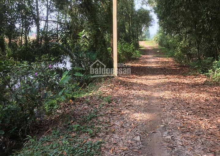 Vườn cây ăn trái xã Trung An, đất quy hoạch khu dân cư lên thổ cư được, DT 2.400m2