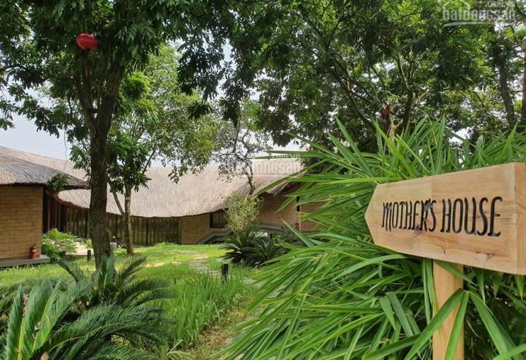 Bán đất trang trại Sóc Sơn, 1700m2 sổ đỏ chính chủ, giá quá rẻ, có video, 0963711313
