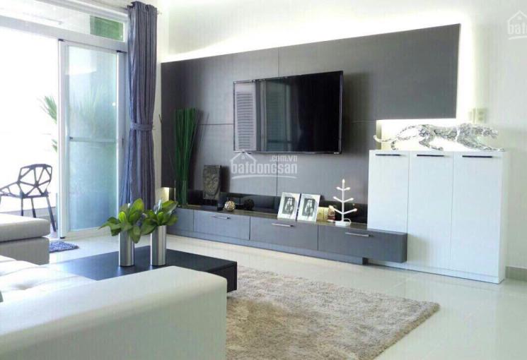Cho thuê căn hộ cao cấp giá tốt nhất Phú Mỹ Hưng dt 100 m2 giá 18 triệu/tháng LH: 0916.427.678.
