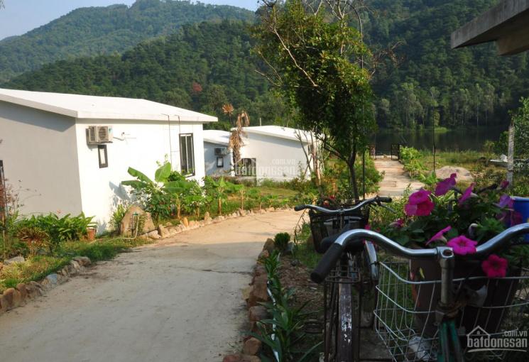 Chính chủ bán đất nghỉ dưỡng, nhà xưởng tại Sóc Sơn, gần sân bay Nội Bài, sổ đỏ, video, giá quá rẻ