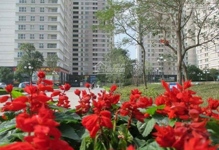 Bán chung cư Dương Nội DT 61m2, 2PN, 2WC, giá 1,150 tỷ, LH chị Nguyệt: 0979.44.1985