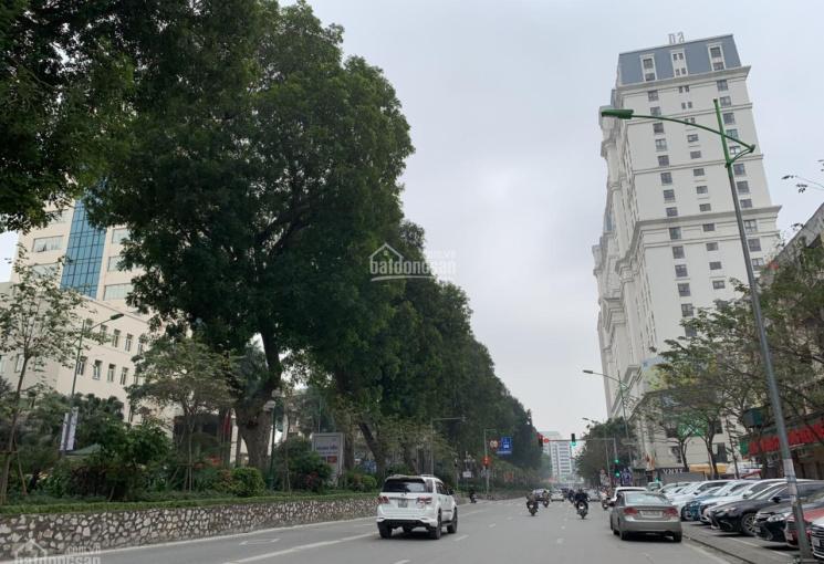 Bán nhanh MP Giảng Võ kinh doanh dòng tiền khủng - 71m2, 7 tầng - rẻ nhất Ba Đình chỉ 23,8 tỷ