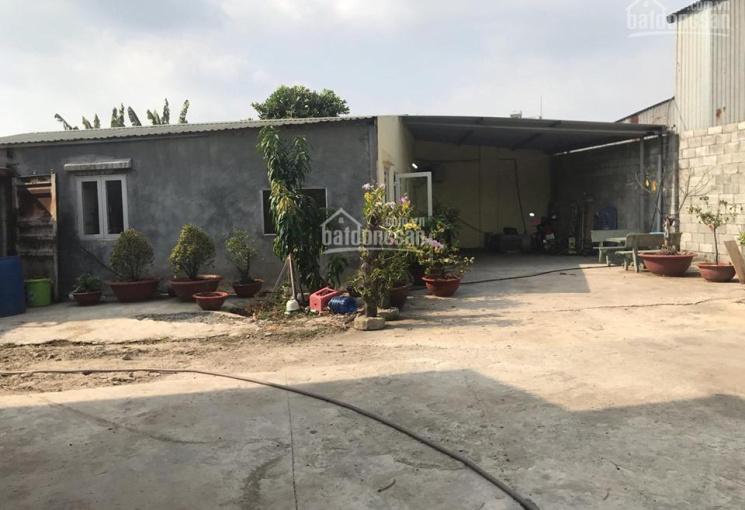 Cần cho thuê xưởng tại Tân Phước Khánh