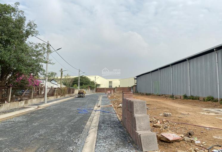 Cần bán gắp 2 lô đất ngay mặt tiền đường Hoàng Hữu Nam thuận tiện cho việc kinh doanh mua bán.