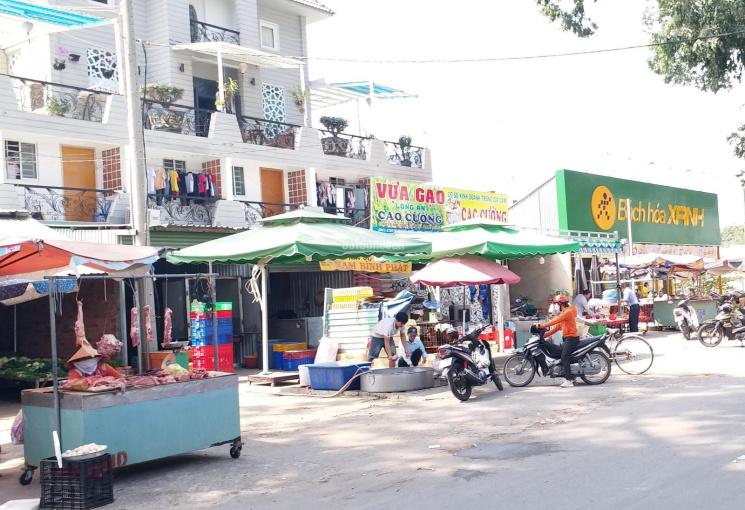 Chợ Phú Mỹ, trường học An Mỹ bán 1 tỷ 480 triệu/nền và 1 tỷ 650 tr/nền, kẹt tiền bán gấp giá rẻ