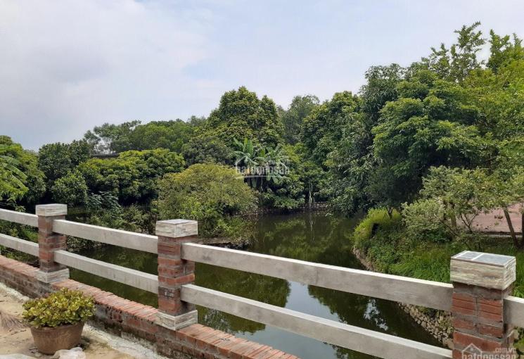 Cần bán 15000m2 đất tặng biệt thự và vườn cây ăn trái, sân tennis tại Hòa thạch, cách QL 21 3,2km