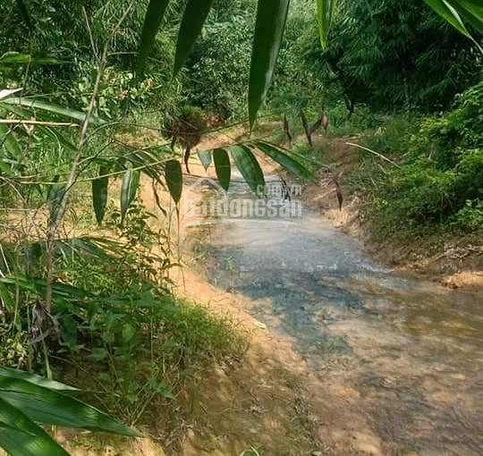 Chính chủ cần bán đất vườn Đồng Nai, có con suối chảy bao quanh, cách Sài Gòn 1h30p đi ô tô