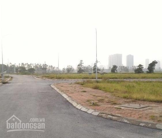 Bán đất đấu giá Chuyên Ngoại, thị xã Duy Tiên, DT 95m2, sổ đỏ