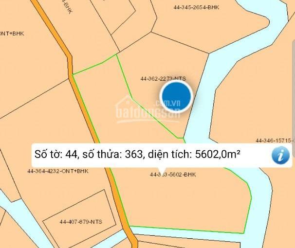 8000m2 Xuân Đông, Cẩm Mỹ, đường Nguyễn Trãi, có nhà cấp 4, vườn bưởi ao cá, chỉ 400tr/sào