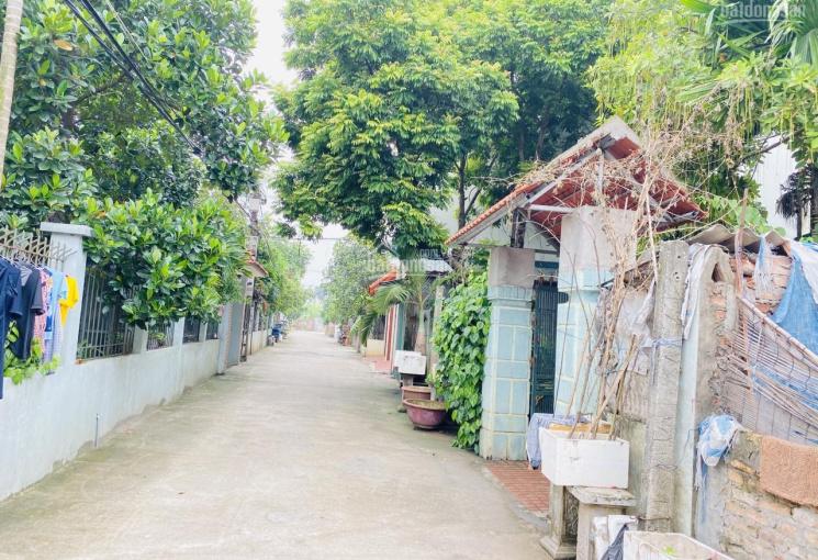 Cần bán gấp 65m2 đất Đa Tốn, Gia Lâm, Hà Nội, đường ô tô cách Vinhomes 600m giá chỉ 24tr/m2
