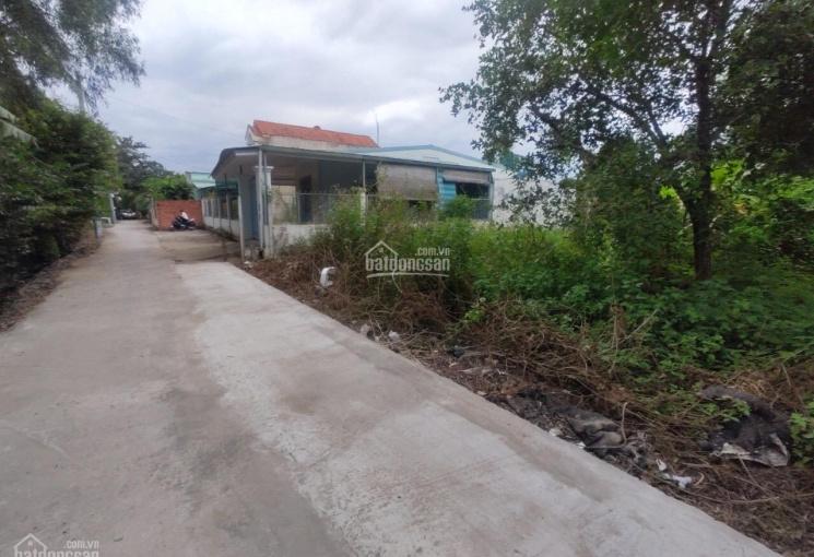 Bán đất đối diện trường học Võ Văn Thặng, Nhị Bình, Hóc Môn 105m2 thổ cư giá 2,4 tỷ SHR