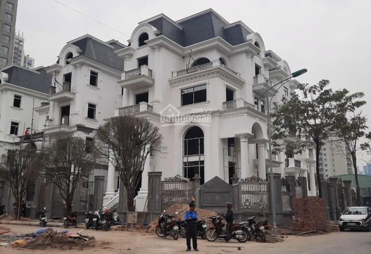Bán biệt thự Nam Cường lô góc 300m2 giá 45 tỷ