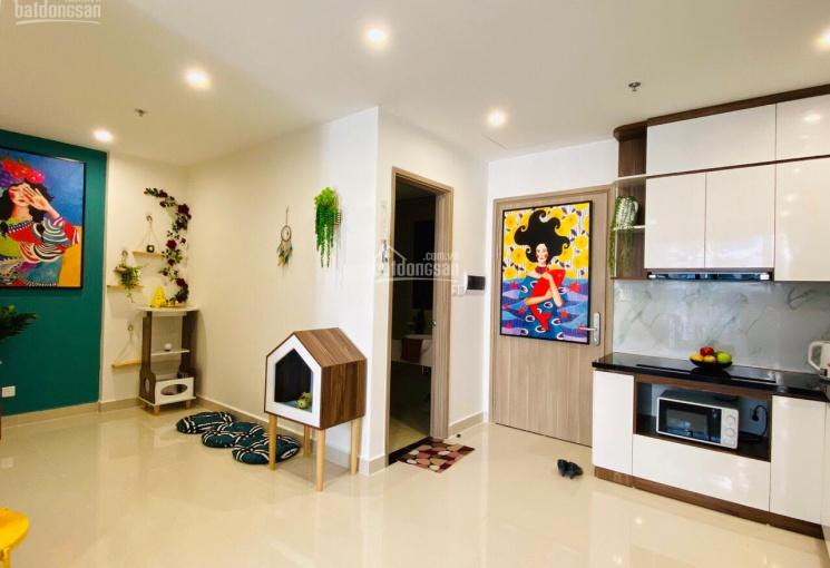 Cập nhật quỹ căn chung cư cho thuê giá tốt nhất Vinhomes Ocean Park