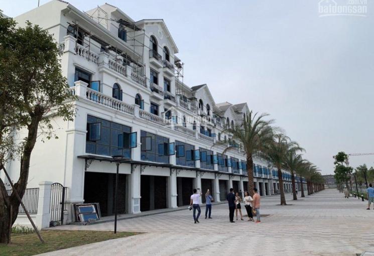 Cập nhật quỹ căn cho thuê: Shophouse, biệt thự, liền kề, giá tốt nhất Vinhomes Ocean Park