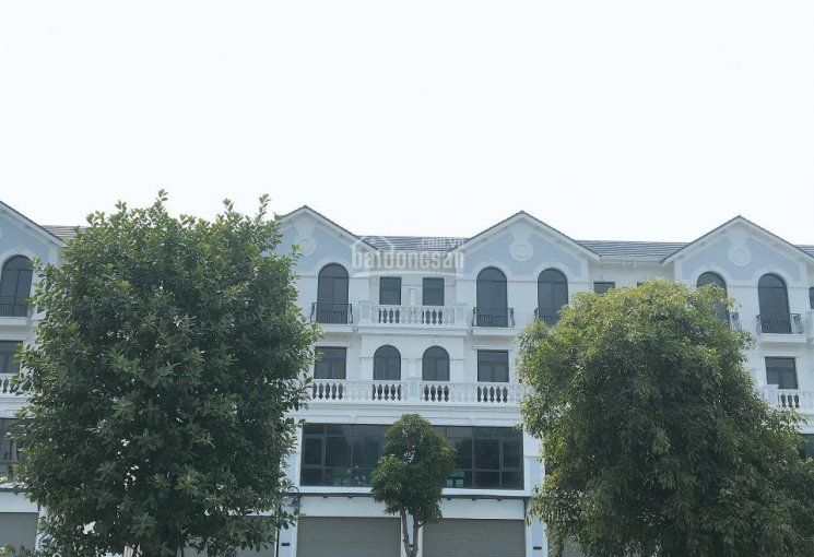 Bán cả cặp shophouse Sao Biển 23, gần TTTM Vincom, DT 125m2, 5T, giá gốc 12,8 tỷ