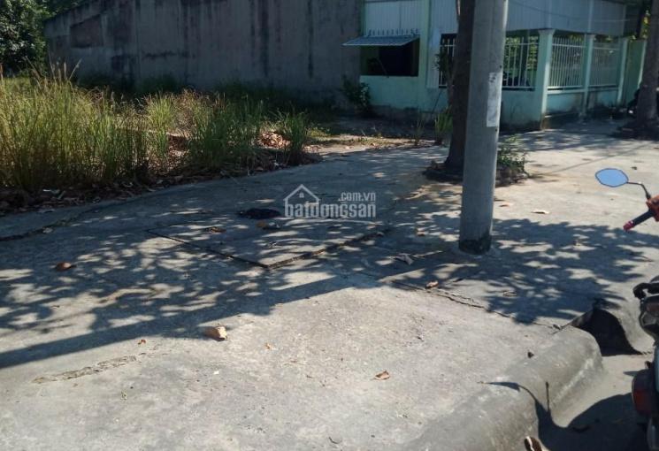 TDC Phước Khánh, giá chính chủ gửi đầu tư bao lợi nhuận 7x22m, giá chỉ 14 tới 16tr/m2
