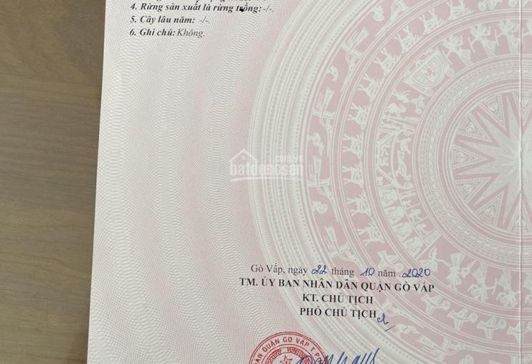 Bán gấp lô đất Quang Trung, phường 11. Giá 3,1 tỷ, LH 0902504839