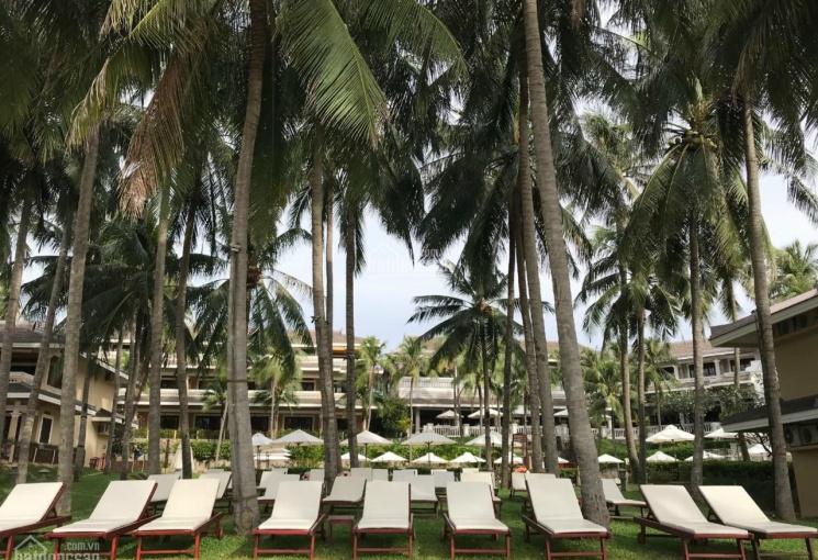 Cần thanh khoản, giảm giá chốt 25%, bán Resort 4 sao, 80 phòng mặt biển Phố Tây, Phan Thiết