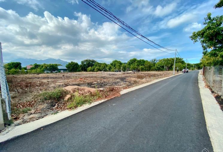 Bán đất Cam Thành Bắc ngang 10m chỉ 450tr/lô giá siêu rẻ trong mùa dịch, LH: 0909850538