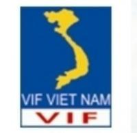 Công ty CP Đầu tư Tài chính VIF Việt Nam