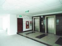 Cho thuê văn phòng quận Đống Đa, phố Nguyễn Thái Học 30m2, 40m2 300m2, giá 160.000/m2/tháng
