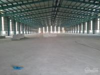 cho thuê kho xưởng mới 100 khu công nghiệp cẩm giàng hải dương dt 500m2 đến 100000m2