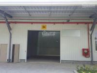 Cho thuê kho bãi, nhà xưởng KCN Tân Kim, Quốc Lộ 50, xã Tân Kim, Huyện Cần Giuộc. Diện tích: 1160m2