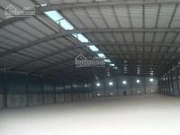 Nhà xưởng tiêu chuẩn cho thuê trong cụm cn lại yên, hoài đức, hà nội. diện tích 1500m2