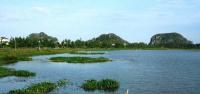 Bán 02 lô đất liền kề view sông cổ cò giá gốc 450 triệulô LH: 0935698021