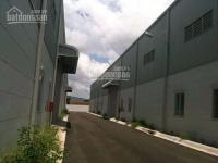 Cho thuê xưởng diện tích từ 1.000m2 đến hơn 10.000m2, mặt tiền đường nguyễn thị định