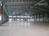 Chính chủ cho thuê kho - xưởng 500m2, 20tr/tháng, container đi, mọi ngành nghề, đường an phú đông