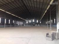 Cho thuê kho xưởng 4000m2 tại phường phú hữu, quận 9