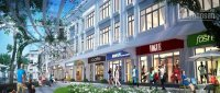 Chính chủ bán căn góc shophouse nq25-28 diện tích nhỏ vị trí hot vinhomes the harmony