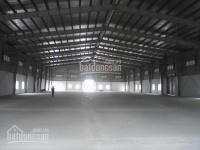 Ct kho xưởng đường quốc lộ 1a, phường thới an, q12. dt: 1.200m2, 80tr/th - dt: 2.400m2, 120tr/th
