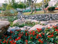 Cập nhật hình ảnh mới nhất về công viên lõi giữa 10ha hồng hà eco city