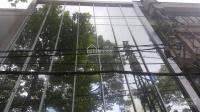 Bán hoặc cho thuê nguyên căn mt 177 - 177a nguyễn chí thanh, 7,7x10m trệt, 3 lầu