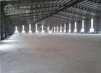 Cho thuê kho - xưởng mới xây 280m2, 12tr/tháng ( thương lượng ), mọi ngành nghề, đường apđ 09