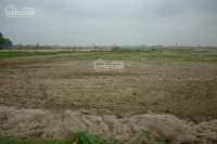 Cho thuê đất 700m2 - 14.000m2 để xây dựng kho, mặt tiền lê văn lương - long thới, nhà bè.