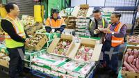 Bán kiot hoa quả vị trí đẹp lô góc tại chợ đầu mối sở dầu hồng bàng giá 260tr