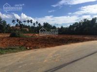 Bán đất trong khu công nghiệp hòa trung huyện cái nước tỉnh cà mau 7200m2 LH: 0902282338