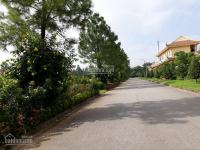 Chính chủ bán đất biệt thự 200m, mặt tiền 10m khu sinh thái Đan Phuợng