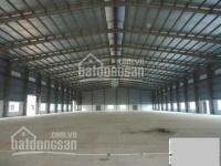 Cho thuê kho - xưởng 280m2, 11tr/tháng, mới xây, điện 3FA, thích hợp mọi ngành nghề, đường APĐ 09