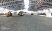 Cho thuê kho, nhà xưởng tại trạm trôi, nhổn, hoài đức, diện tích 155-355-500-1260m2 nhà kho mới